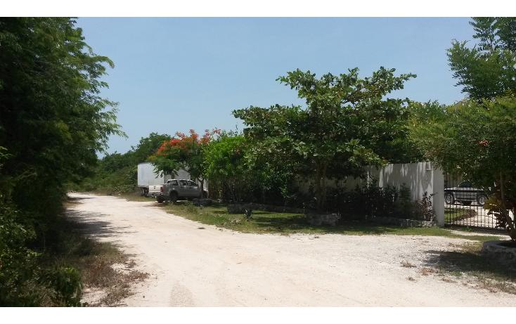 Foto de terreno habitacional en venta en  , puerto morelos, benito juárez, quintana roo, 1090915 No. 08