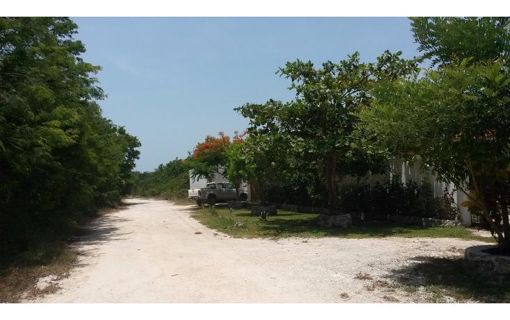 Foto de terreno habitacional en venta en  , puerto morelos, benito juárez, quintana roo, 1090915 No. 10