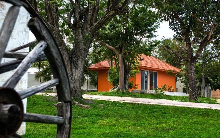 Foto de terreno habitacional en venta en, puerto morelos, benito juárez, quintana roo, 1099077 no 03
