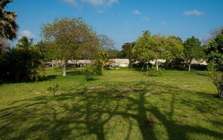 Foto de terreno habitacional en venta en  , puerto morelos, benito juárez, quintana roo, 1099077 No. 04
