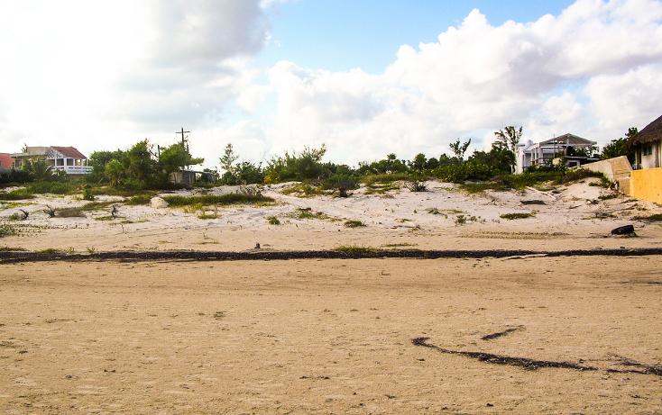 Foto de terreno comercial en venta en  , puerto morelos, benito juárez, quintana roo, 1117999 No. 02