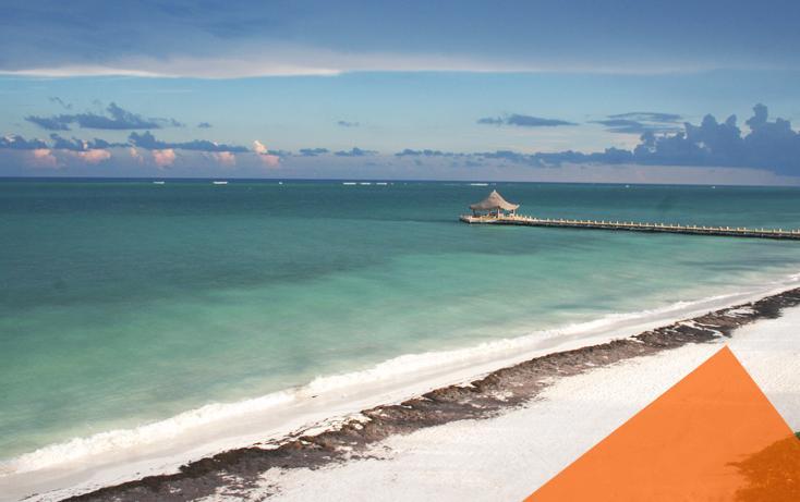 Foto de terreno comercial en venta en, puerto morelos, benito juárez, quintana roo, 1117999 no 03