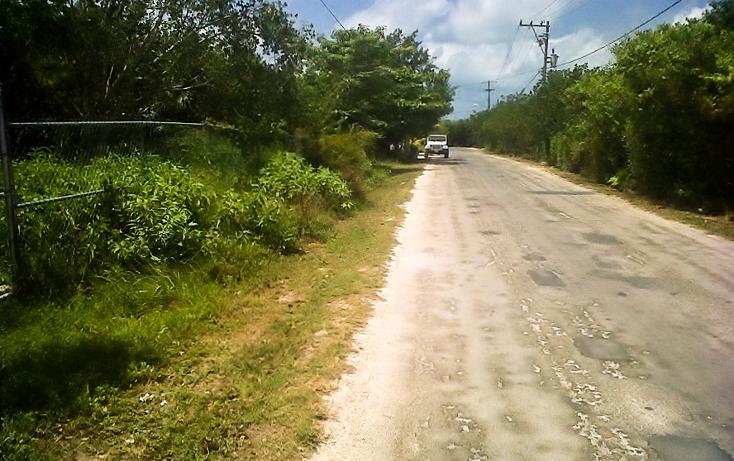 Foto de terreno comercial en venta en  , puerto morelos, benito juárez, quintana roo, 1117999 No. 04
