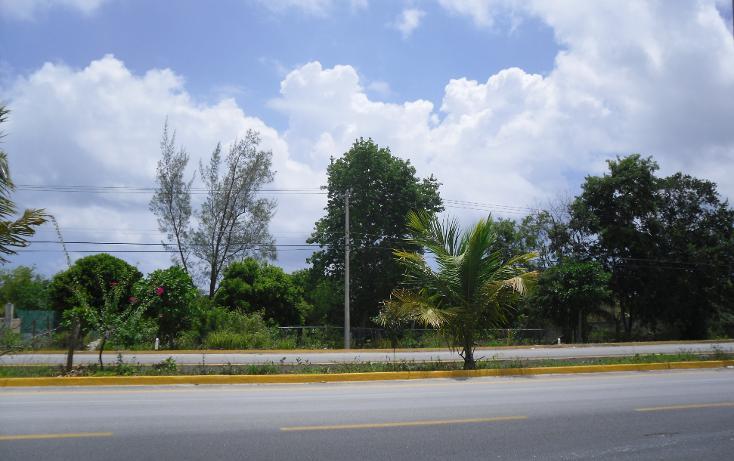 Foto de terreno comercial en venta en  , puerto morelos, benito juárez, quintana roo, 1138125 No. 01