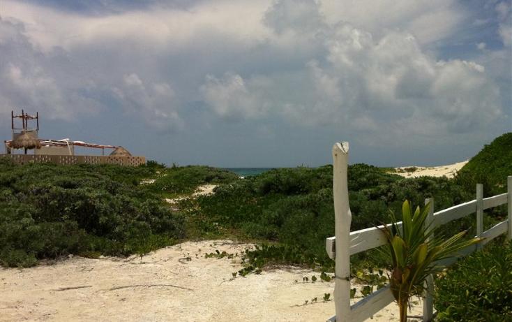 Foto de terreno habitacional en venta en  , puerto morelos, benito ju?rez, quintana roo, 1147455 No. 02