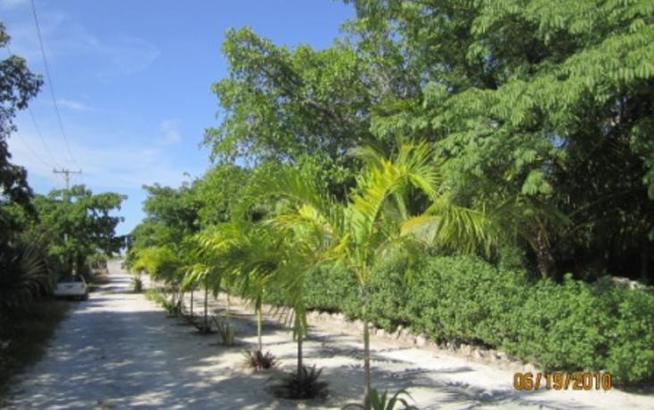 Foto de terreno habitacional en venta en  , puerto morelos, benito ju?rez, quintana roo, 1165111 No. 01