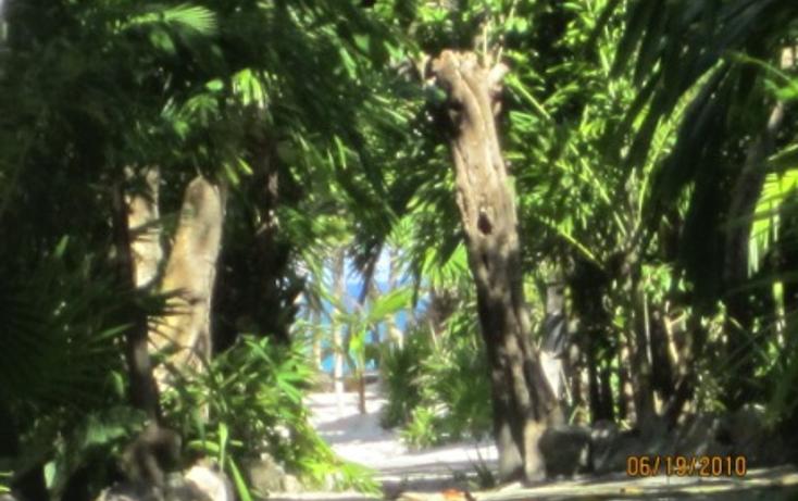 Foto de terreno habitacional en venta en  , puerto morelos, benito ju?rez, quintana roo, 1165111 No. 04