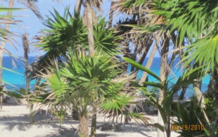 Foto de terreno habitacional en venta en  , puerto morelos, benito ju?rez, quintana roo, 1165111 No. 05