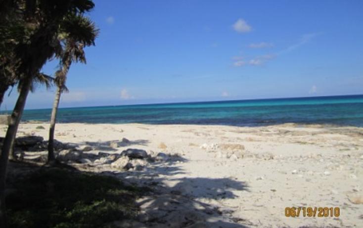Foto de terreno habitacional en venta en  , puerto morelos, benito ju?rez, quintana roo, 1165111 No. 09