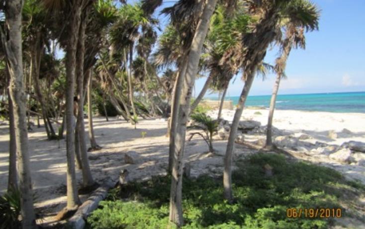Foto de terreno habitacional en venta en  , puerto morelos, benito ju?rez, quintana roo, 1165111 No. 10