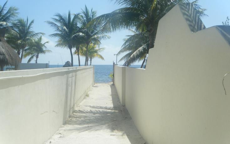 Foto de casa en venta en  , puerto morelos, benito juárez, quintana roo, 1167603 No. 05