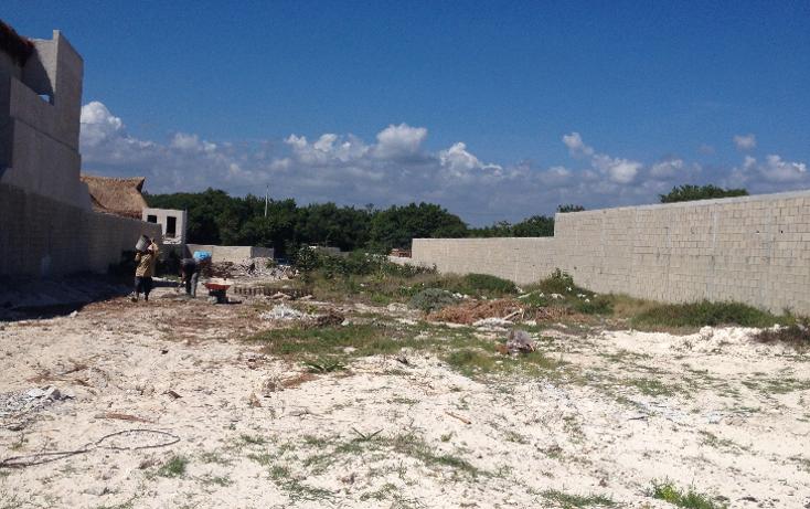 Foto de terreno habitacional en venta en  , puerto morelos, benito juárez, quintana roo, 1184397 No. 05