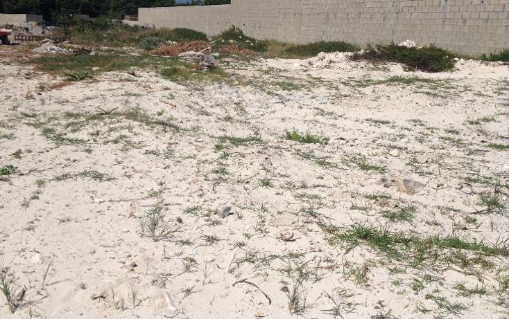 Foto de terreno habitacional en venta en  , puerto morelos, benito juárez, quintana roo, 1184397 No. 06