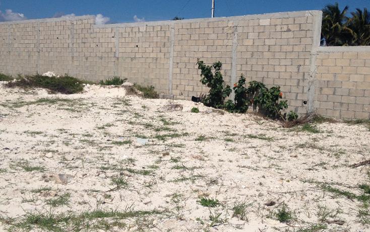 Foto de terreno habitacional en venta en  , puerto morelos, benito juárez, quintana roo, 1184397 No. 07