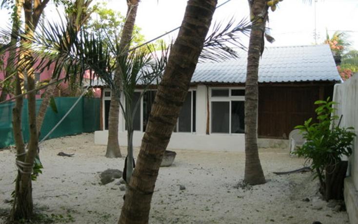 Foto de local en venta en  , puerto morelos, benito juárez, quintana roo, 1260417 No. 05