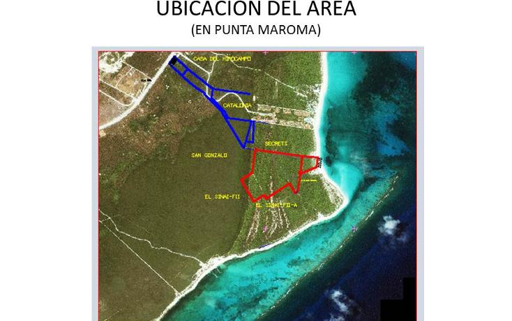 Foto de terreno comercial en venta en  , puerto morelos, benito ju?rez, quintana roo, 1309399 No. 05
