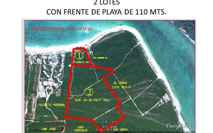 Foto de terreno comercial en venta en  , puerto morelos, benito ju?rez, quintana roo, 1309399 No. 06