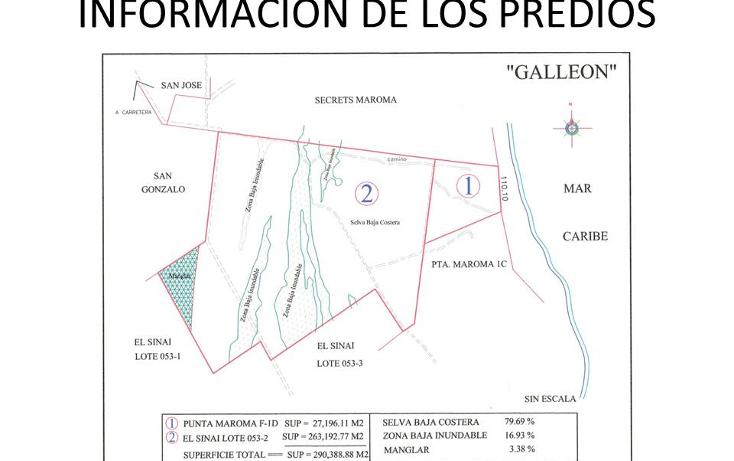 Foto de terreno comercial en venta en  , puerto morelos, benito ju?rez, quintana roo, 1309399 No. 08