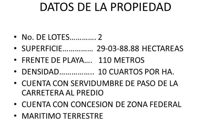 Foto de terreno comercial en venta en  , puerto morelos, benito ju?rez, quintana roo, 1309399 No. 11