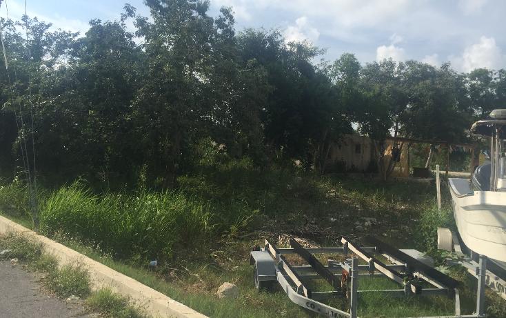 Foto de terreno comercial en venta en  , puerto morelos, benito ju?rez, quintana roo, 1347641 No. 05