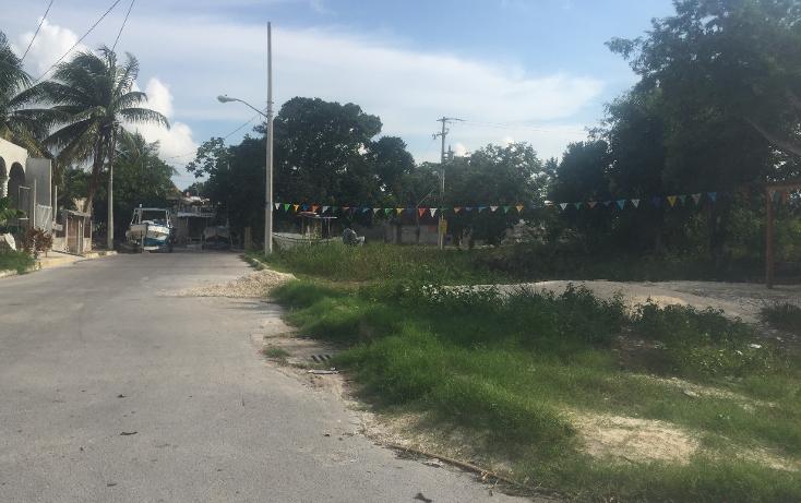 Foto de terreno comercial en venta en  , puerto morelos, benito ju?rez, quintana roo, 1347641 No. 15
