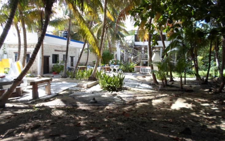 Foto de edificio en venta en  , puerto morelos, benito ju?rez, quintana roo, 1408947 No. 16