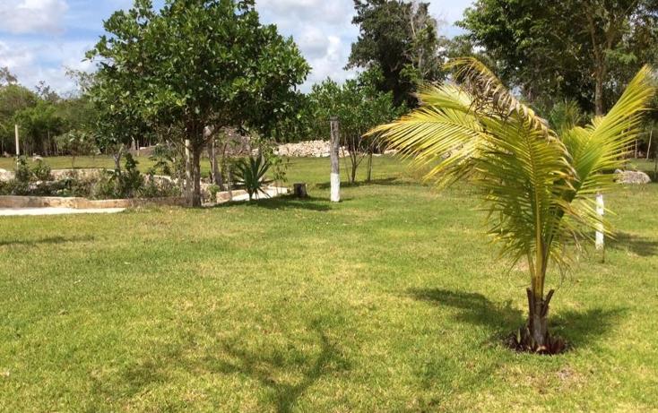 Foto de terreno comercial en venta en  , puerto morelos, benito juárez, quintana roo, 1577522 No. 03