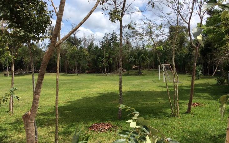 Foto de terreno comercial en venta en  , puerto morelos, benito juárez, quintana roo, 1577522 No. 04