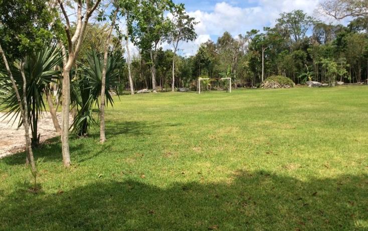 Foto de terreno comercial en venta en  , puerto morelos, benito juárez, quintana roo, 1577522 No. 06