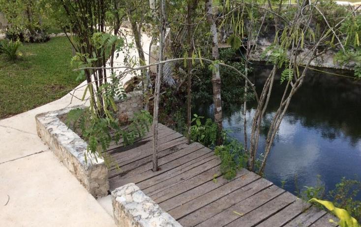 Foto de terreno comercial en venta en  , puerto morelos, benito juárez, quintana roo, 1577522 No. 07