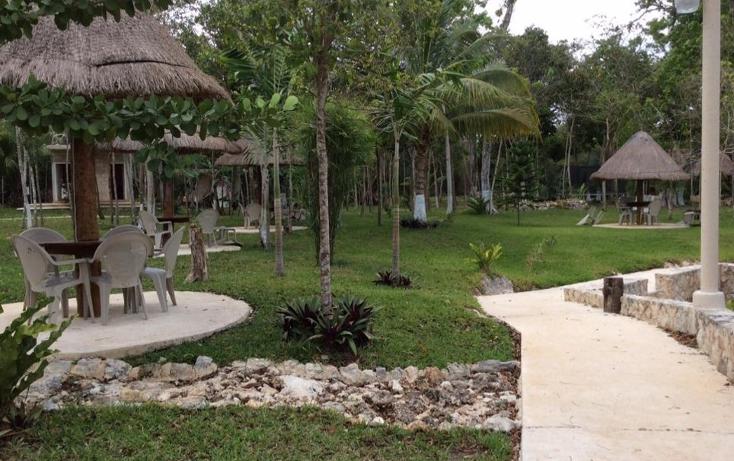 Foto de terreno comercial en venta en  , puerto morelos, benito juárez, quintana roo, 1577522 No. 08