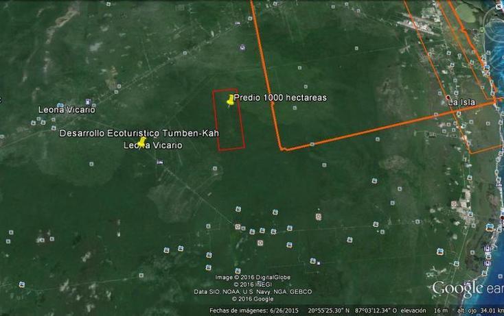 Foto de terreno habitacional en venta en, puerto morelos, benito juárez, quintana roo, 1658901 no 08