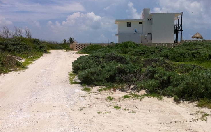 Foto de terreno habitacional en venta en  , puerto morelos, benito ju?rez, quintana roo, 1865230 No. 05