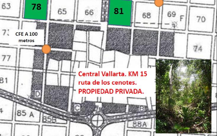 Foto de terreno habitacional en venta en  , puerto morelos, benito juárez, quintana roo, 1947952 No. 04