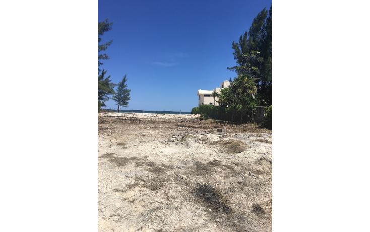 Foto de terreno habitacional en venta en  , puerto morelos, benito juárez, quintana roo, 1961904 No. 03