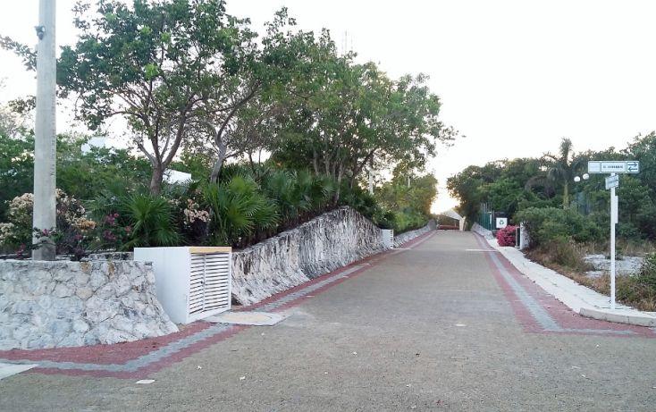 Foto de terreno habitacional en venta en, puerto morelos, benito juárez, quintana roo, 1972816 no 05