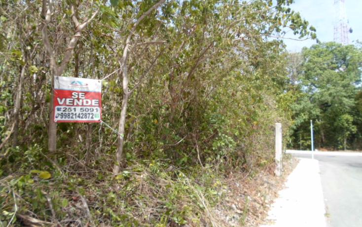 Foto de terreno habitacional en venta en  , puerto morelos, benito juárez, quintana roo, 1979726 No. 05