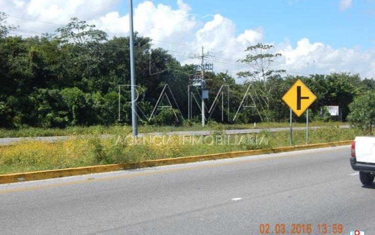 Foto de terreno comercial en venta en  , puerto morelos, benito juárez, quintana roo, 2031562 No. 05