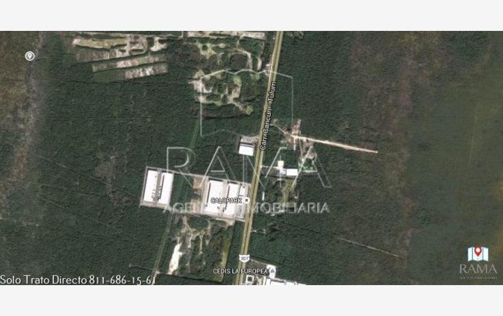 Foto de terreno comercial en venta en  , puerto morelos, benito juárez, quintana roo, 2031562 No. 06