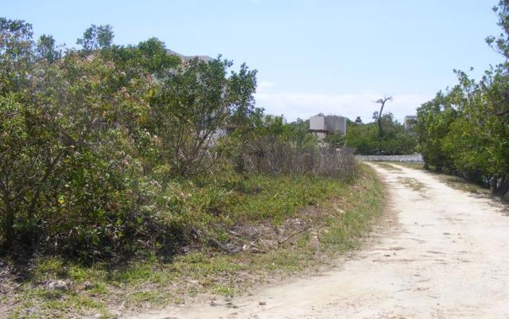 Foto de terreno habitacional en venta en  , puerto morelos, benito juárez, quintana roo, 2642914 No. 02