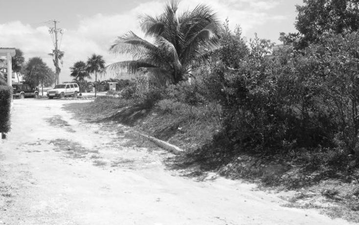 Foto de terreno habitacional en venta en  , puerto morelos, benito juárez, quintana roo, 2642914 No. 05