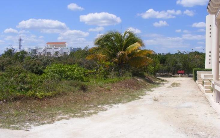 Foto de terreno habitacional en venta en  , puerto morelos, benito juárez, quintana roo, 2642914 No. 06