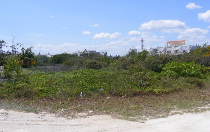 Foto de terreno habitacional en venta en  , puerto morelos, benito juárez, quintana roo, 2642914 No. 07