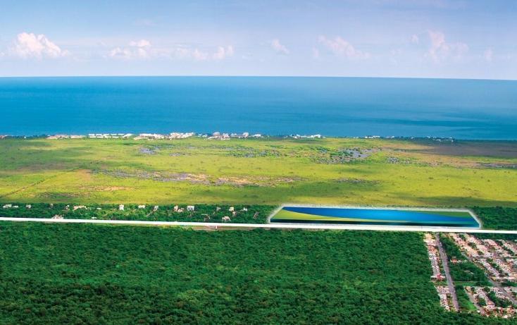 Foto de terreno habitacional en venta en  , puerto morelos, benito juárez, quintana roo, 3424654 No. 01
