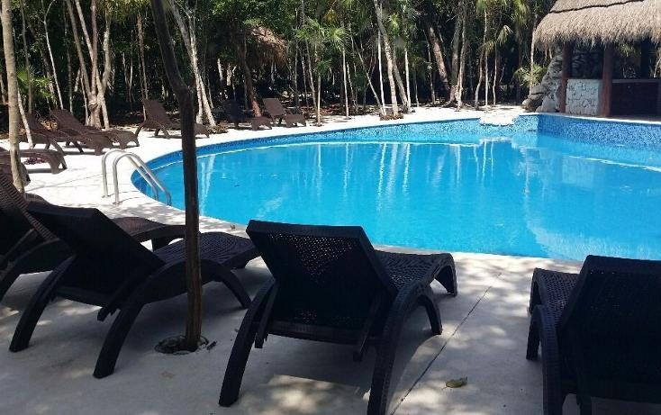 Foto de terreno habitacional en venta en  , puerto morelos, benito juárez, quintana roo, 3424654 No. 06