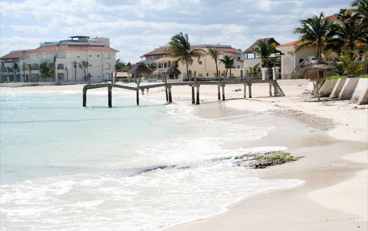 Foto de departamento en venta en  , puerto morelos, benito juárez, quintana roo, 823653 No. 09