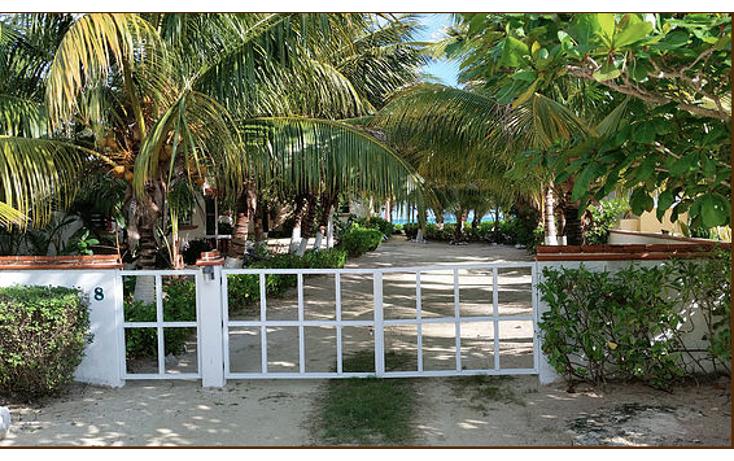 Foto de terreno habitacional en venta en  , puerto morelos, benito juárez, quintana roo, 938469 No. 01