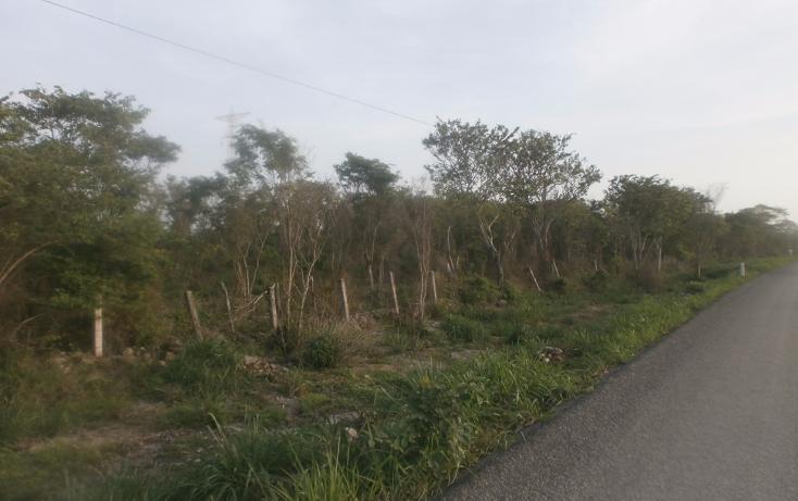 Foto de terreno habitacional en venta en, punta xen, champotón, campeche, 1286941 no 01