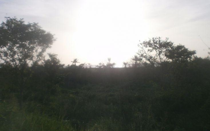 Foto de terreno habitacional en venta en, punta xen, champotón, campeche, 1286941 no 03