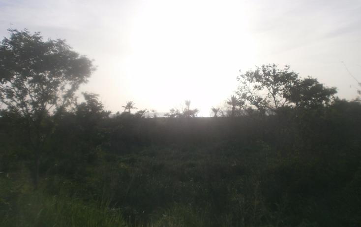 Foto de terreno habitacional en venta en  , punta xen, champotón, campeche, 1286941 No. 03